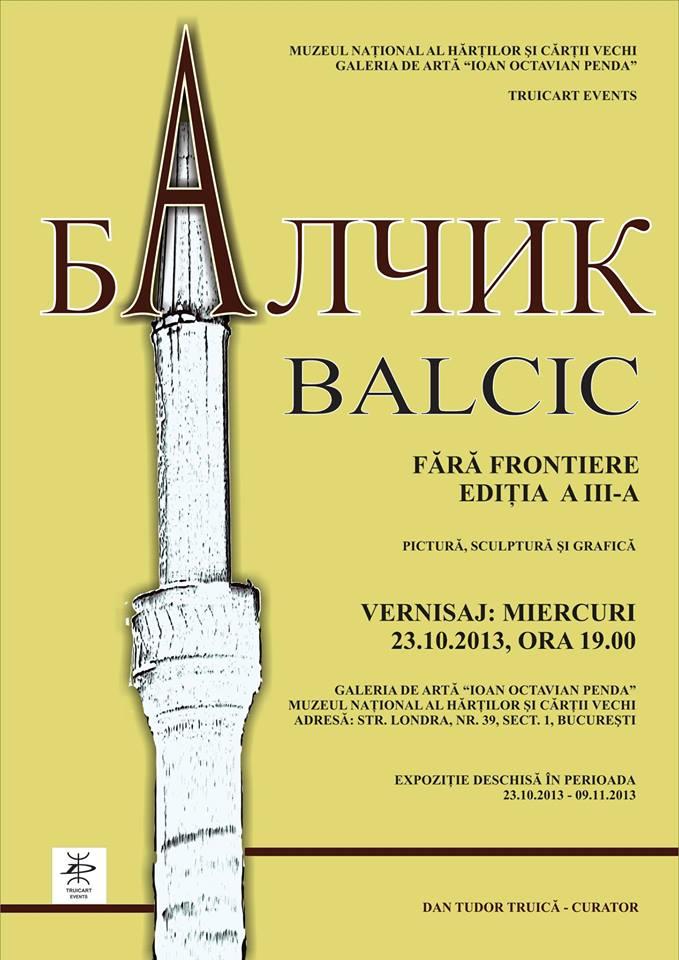 Informations Picturi Irina Aiacoboae